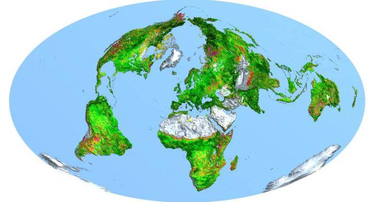 La Tierra tiene ahora más superficie verde que hace tres décadas, según un estudio internacional que ha sido publicado en la revista Nature Climate Change.