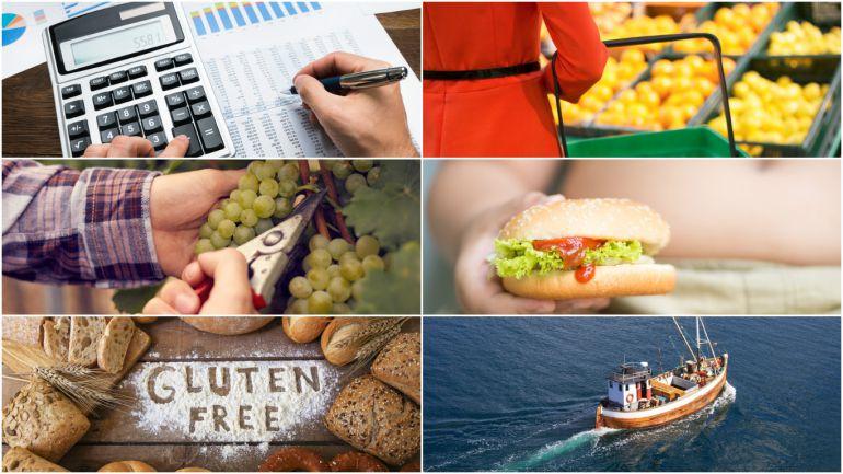 ¿Qué podría hacer el nuevo Gobierno para que comer en España sea más saludable y sostenible?
