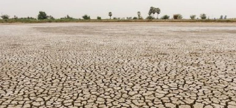 El incremento de las olas de calor y los períodos de sequía es una de las consecuencias del actual recalentamiento de la Tierra provocada por las elevadas emisiones de gases que provienen de la quema de combustibles fósiles como el carbón o el petróleo.