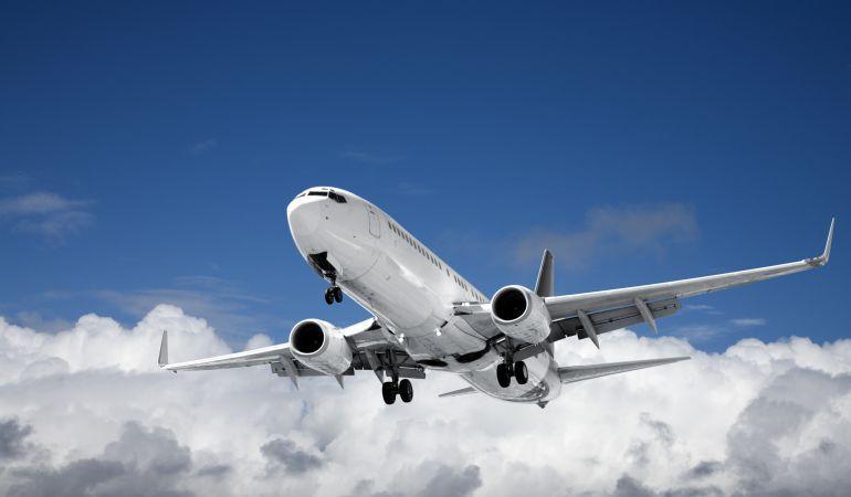 Imagen de un avión comercial en un vuelo regular.