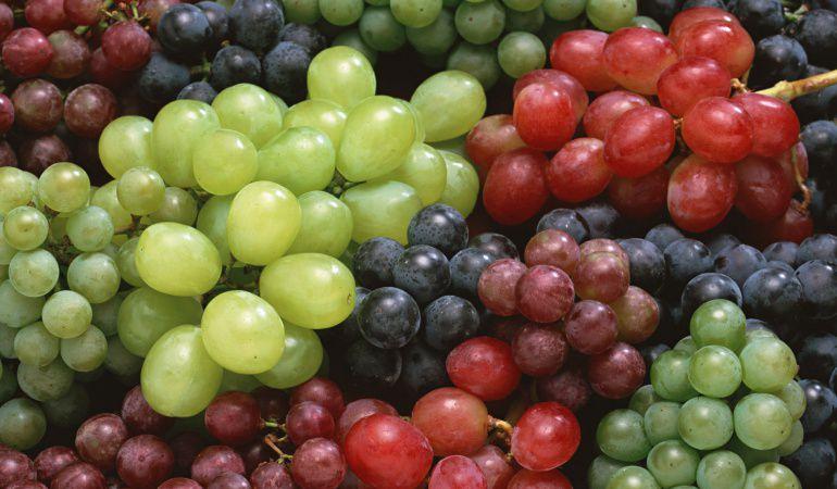 Las uvas pueden ser un gran enemigo de los más pequeños.