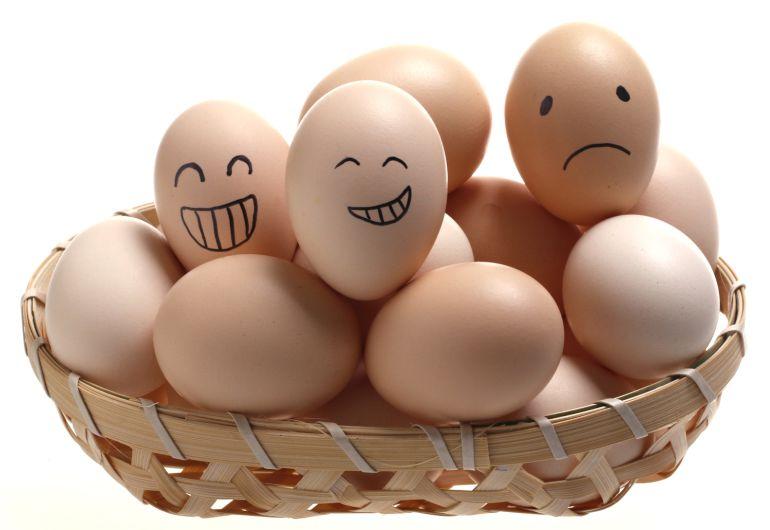 Los mejores huevos son los más frescos.