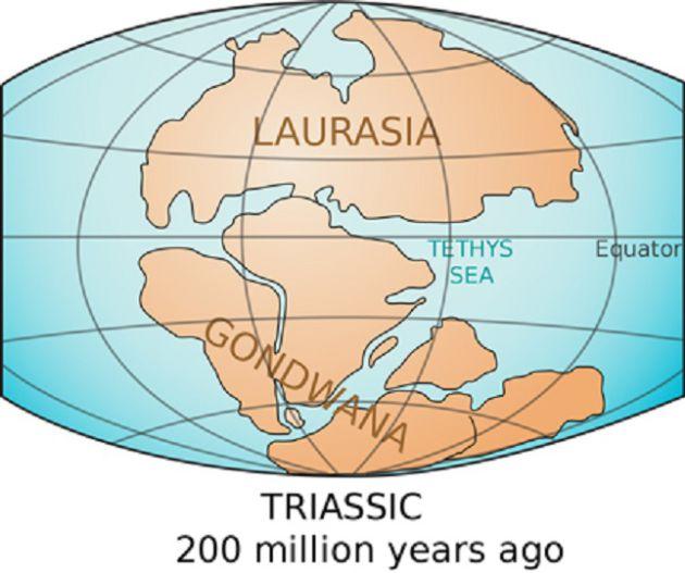 Los súpercontinentes de Laurasia y Gondwana.