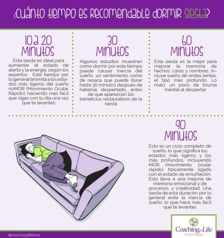 ¿Cuánto es recomendable dormir siesta?