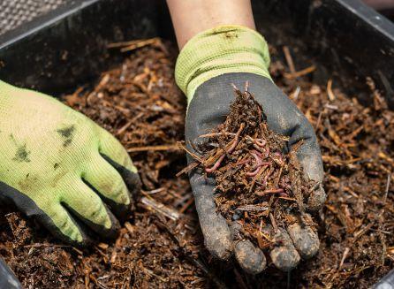 Elaboracion de compostaje