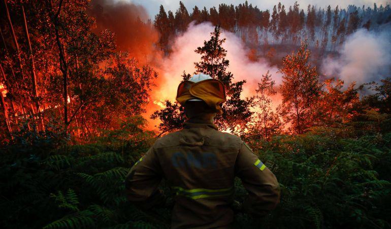 Un bombero observa cómo la evolución del fuego en la localidad de Fato, en el centro de Portugal.