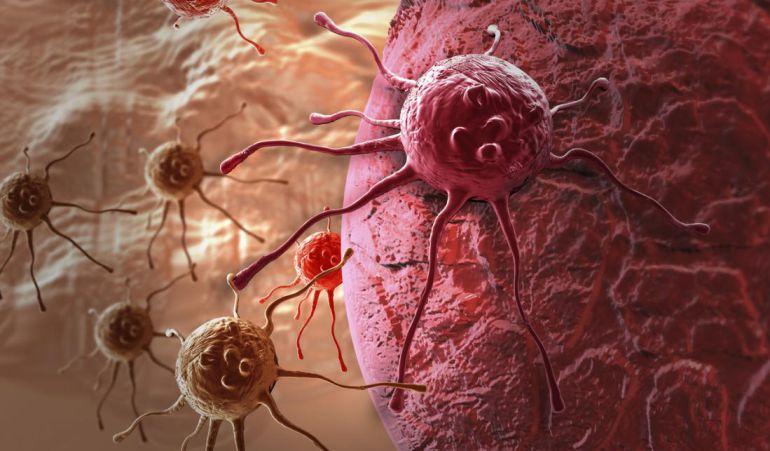 La investigación consiguió hacer frente a las células cancerosas.
