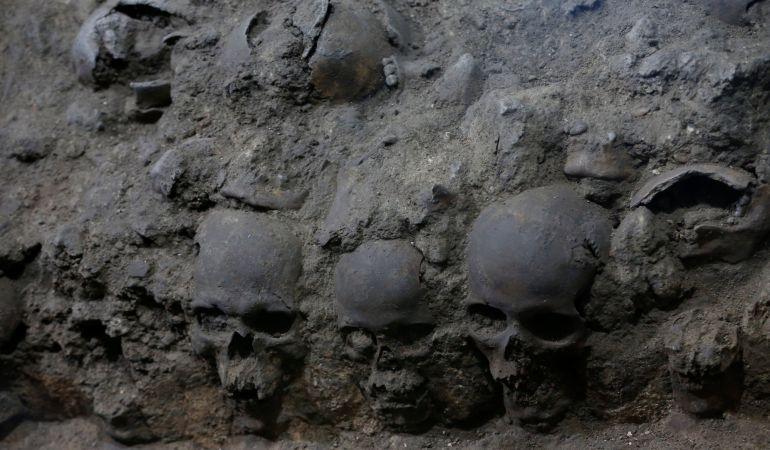 Varios de los cráneos hallados en la torre.
