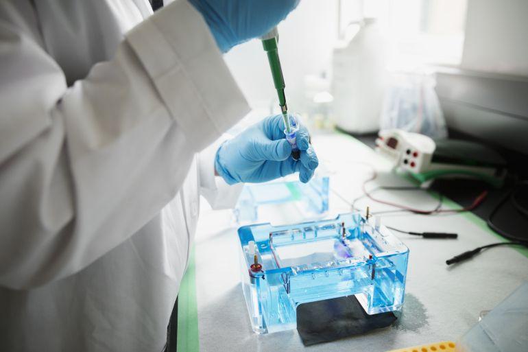 Investigadores españoles presentan el primer fármaco que protege el riñón