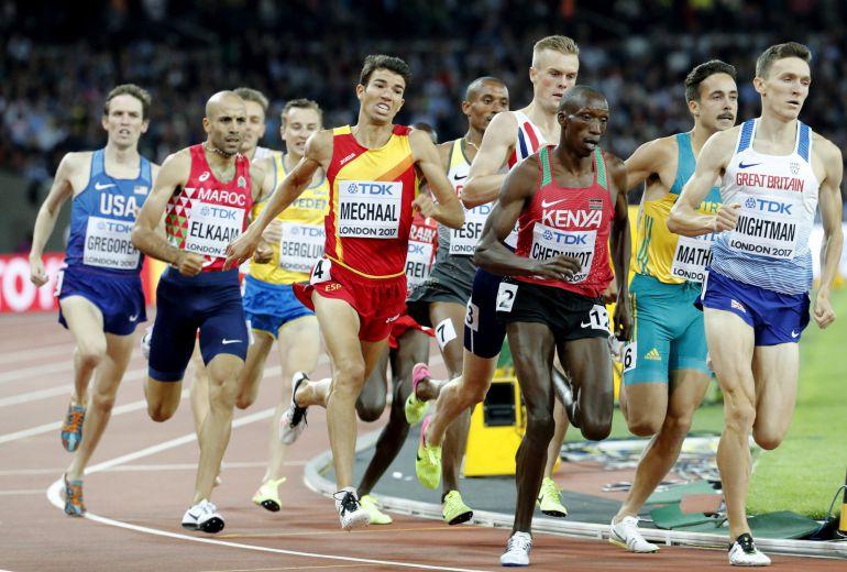 Abel Mechaal durante la prueba de 1500 metros esta noche en el estadio olímpico de Londres