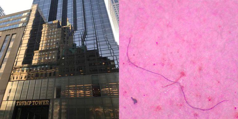 Orb Media ha encontrado dos fibras de plástico en el agua de grifo de la Torre Trump de Nueva York. Casi el 94% de las muestras de agua potable recogidas en Estados Unidos dieron positivo con respecto a la presencia de microplásticos.