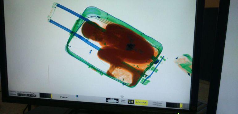 Imagen del pequeño Adou oculto en una maleta