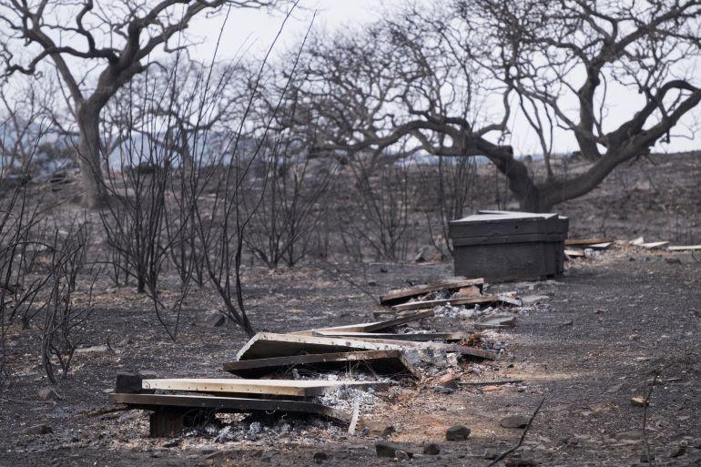 Vista de una de las zonas afectadas por el incendio forestal que se declaró ayer en La Granada de Riotinto (Huelva) y que provocó el desalojo de más de medio millar de personas.