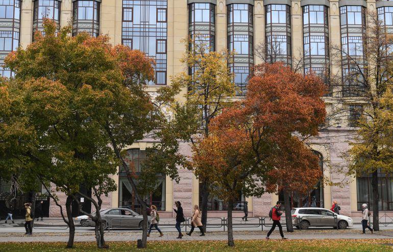 Los colores otoñales de los árboles llenan las ciudades.
