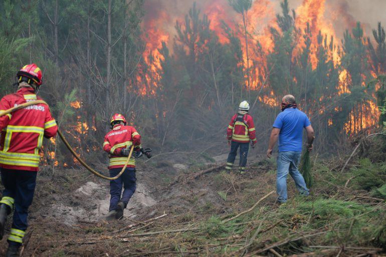 Efectivos de bomberos se disponen a sofocar las llamas en un incendio forestal.