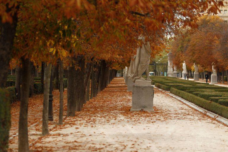 El parque del Retiro de Madrid tiene un efecto termo-regulador, porque genera importantes diferencias de temperatura en tan sólo unos cientos de metros.