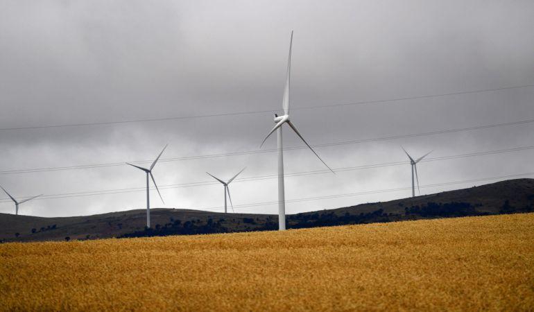 Vista de varias turbinas eólicas.