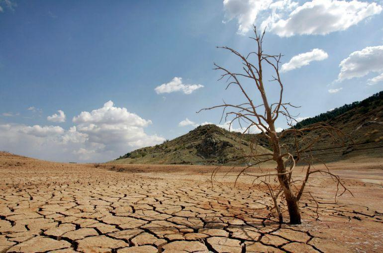 Imagen de los efectos provocados por la sequía en España.