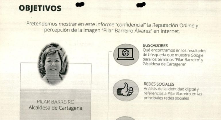 Informe sobre la imagen de Pilar Barreiro realizado por Alejandro de Pedro