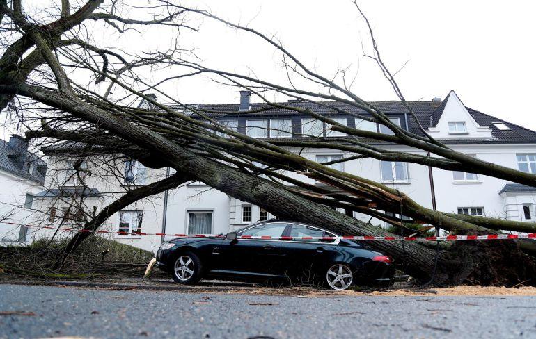 Un árbol caído sobre un coche en Dortmund (Alemania) hoy, 18 de enero de 2018