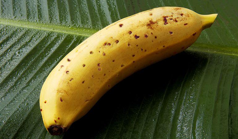 El plátano creado por  D&T Farm.