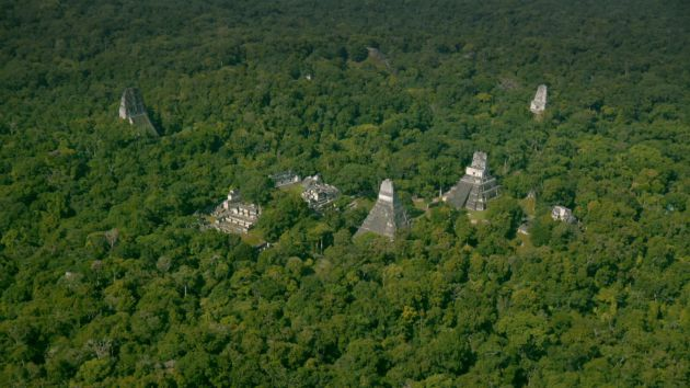 La selva guatemalteca del departamento de Petén.