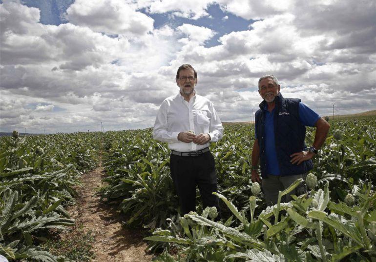 Mariano Rajoy, junto al campo de alcachofas durante su visita a una finca de cultivo en Tudela.