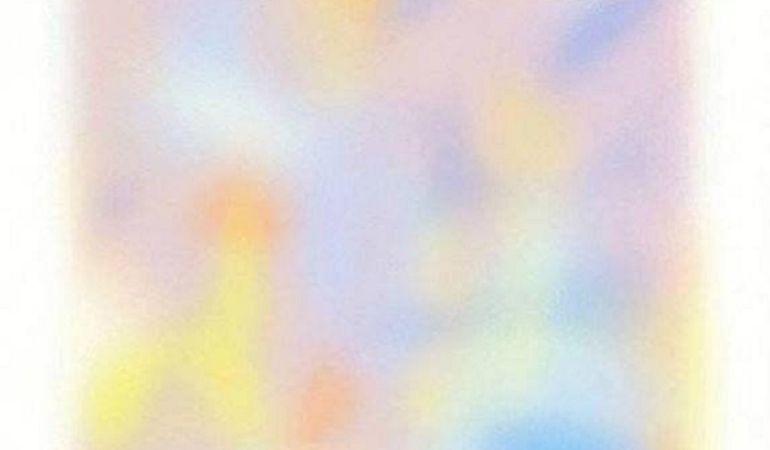 La ilusión óptica triunfa en plataformas como Reddit.