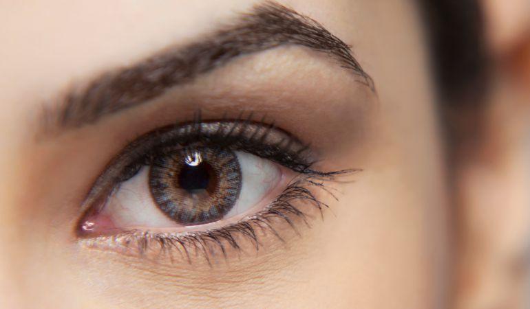 El estudio muestra la importancia de las cejas entre nuestros antepasados.