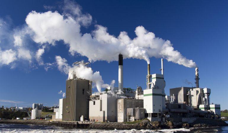 La contaminación también mata a siete millones de personas al año, según los datos de la OMS, la Organización Mundial de la Salud.