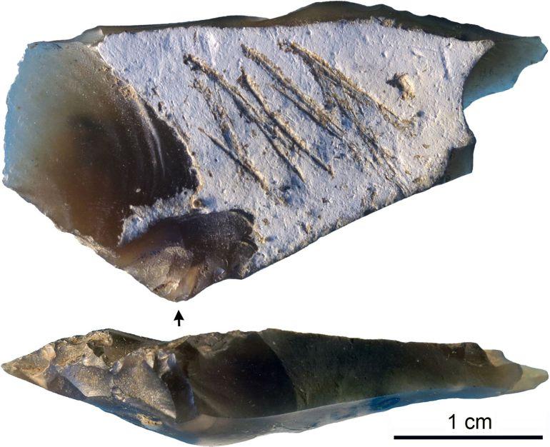 Un grabado en una piedra demuestra que los neandertales también eran artistas