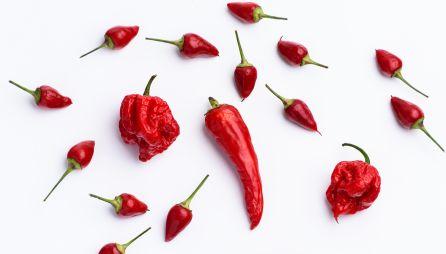 Carolina Reaper, la variedad de chile más picante.