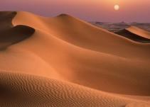 Científicos chinos cultivan la primera cepa de arroz en el desierto con agua del mar