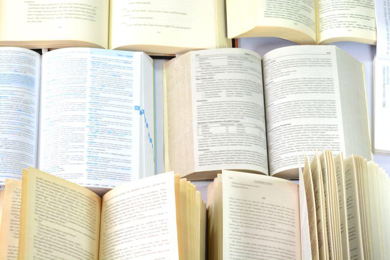 Internacionales: La RAE estudia incluir la palabra