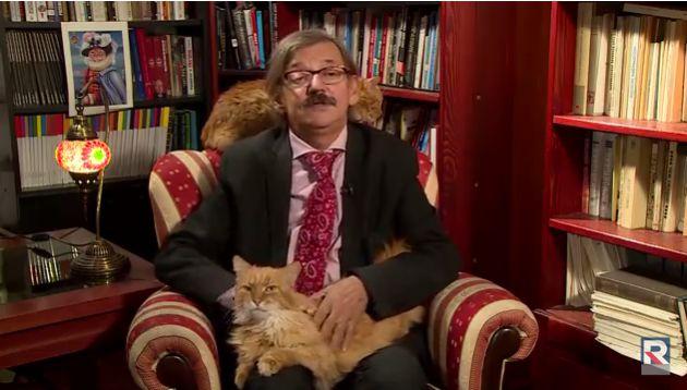 Arruina gato la entrevista en vivo de un historiador — Viral