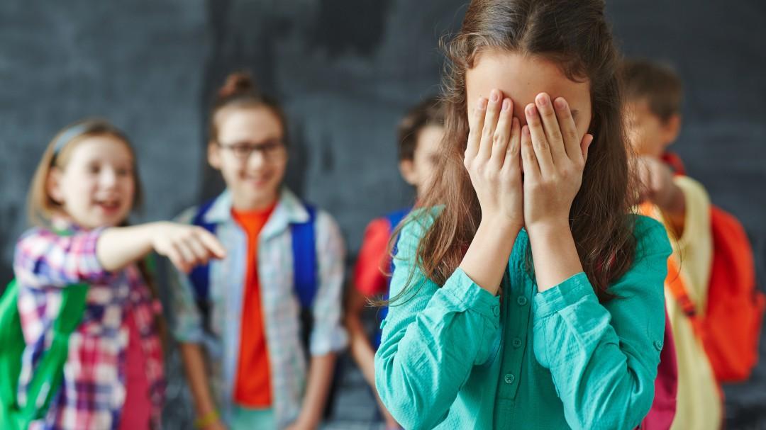 Más de dos denuncias al día por acoso escolar