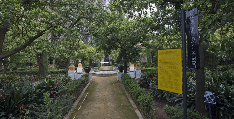 El jardín de los Limoneros de la Casa Palacio de las Dueñas