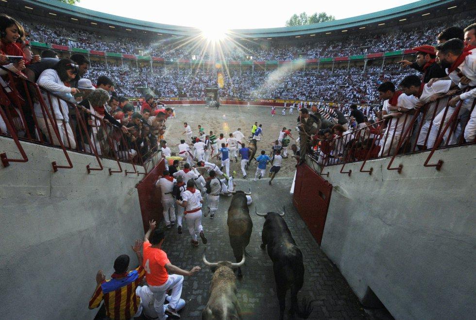 Los toros entran a la plaza por el callejón.