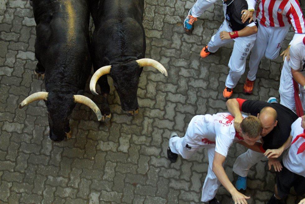 Un mozo retira a otro ante la cercanía de dos de los toros de la manada.