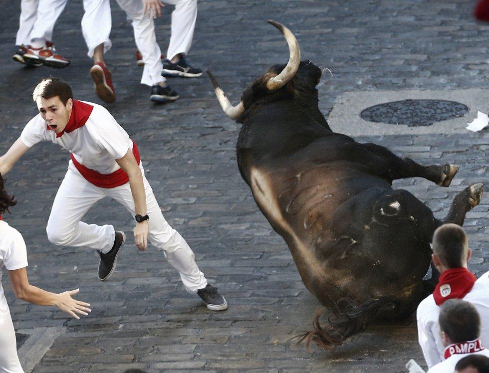 Uno de los toros de la ganadería de Fuente Ymbro se ha resbalado en la Cuesta de Santo Domingo.