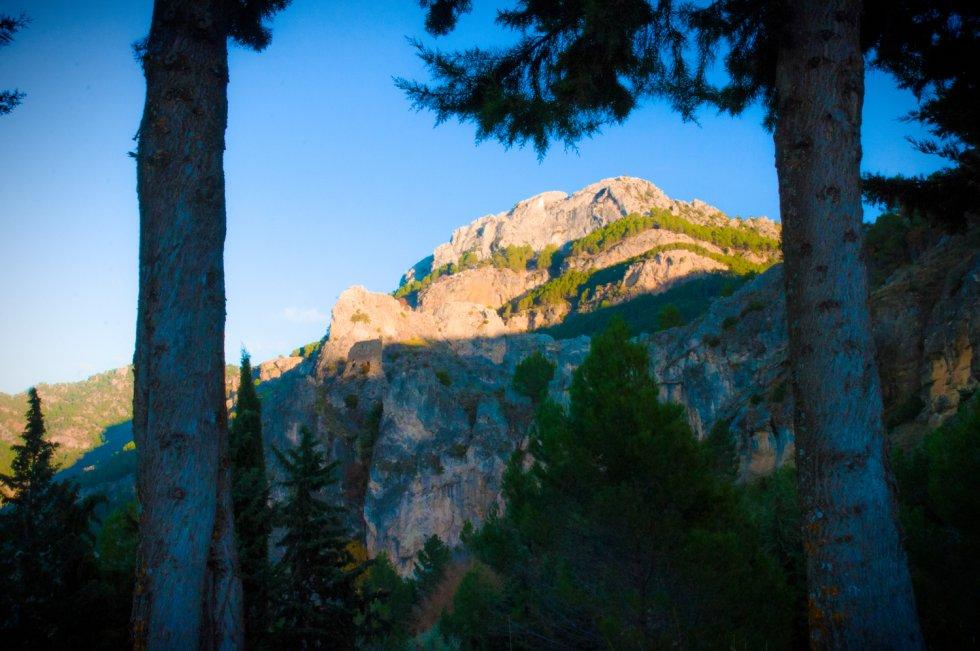 Las montañas de la sierra de Cazorla entre dos pinos.
