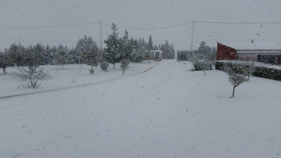 Almansa bajo la nieve