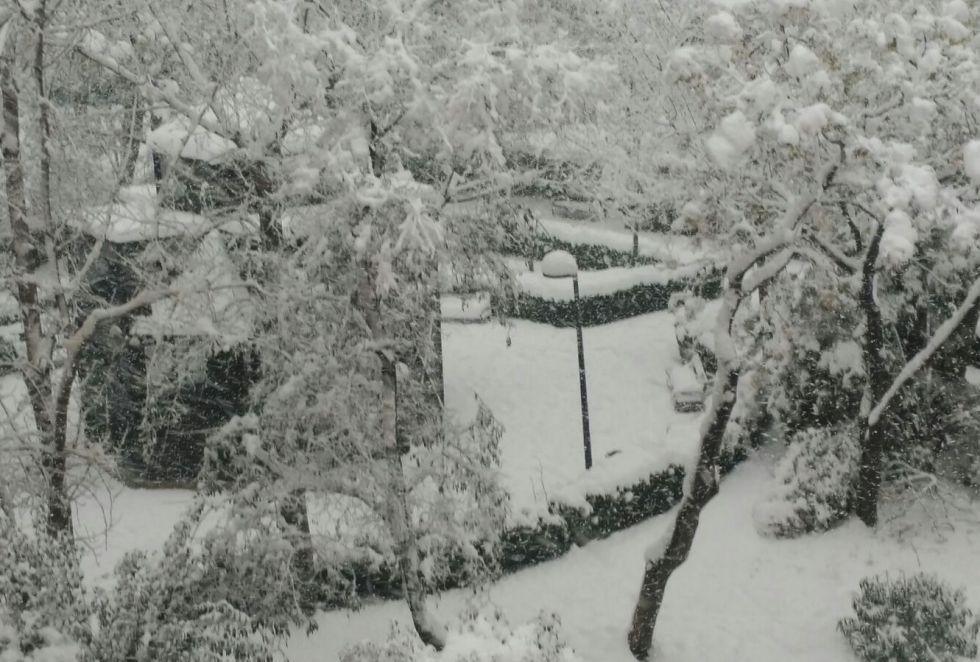La situación en el municipio albaceteño se complica y ya van por 30 centímetros de nieve acumulada y, a ratos, tormenta de nieve (17:30h)