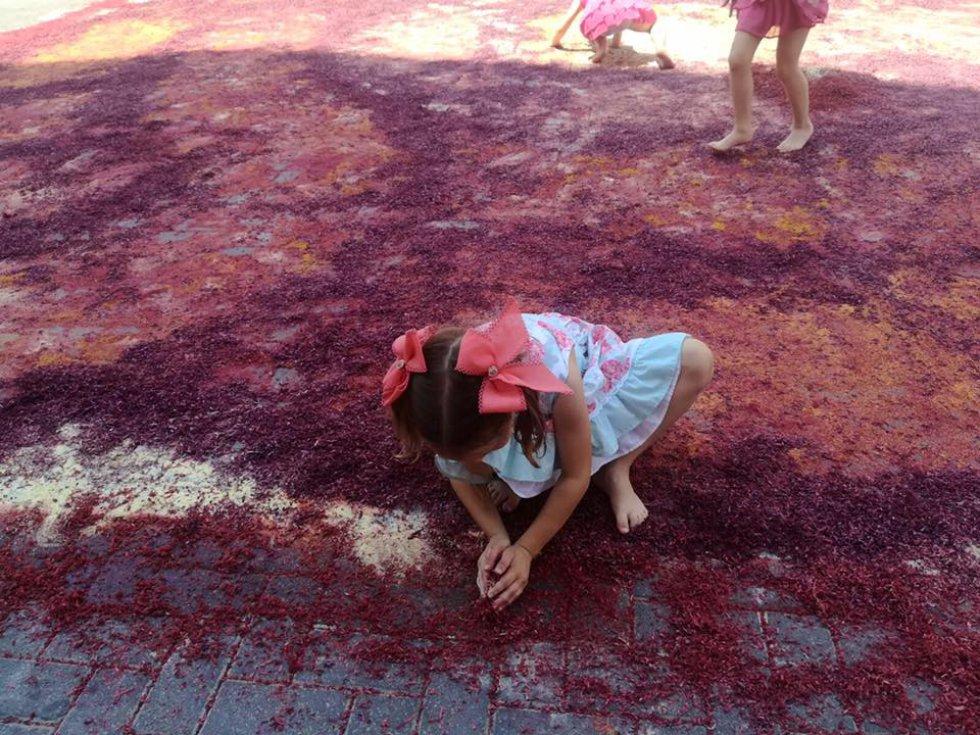 Las alfombras de serrín de Elche de la Sierra