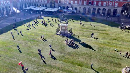 Plaza Mayor Madrid: La hierba inunda la plaza