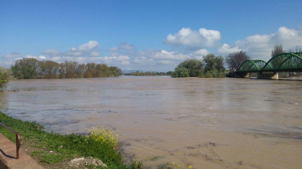 Zona inundada de Gallur