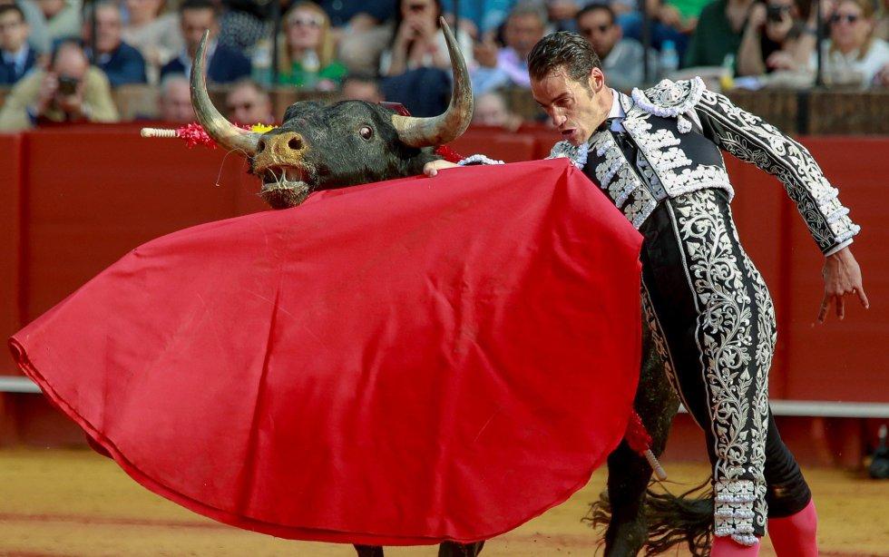 GRAF149. SEVILLA 22/04/2018,- El torero Pepe Moral en la faena con la muleta a su primer toro, de la ganadería de Miura, al que cortó una oreja en la decimocuarta corrida de abono de la Feria de Abril esta tarde en la Real Maestranza de Sevilla. EFE/Julio Muñoz