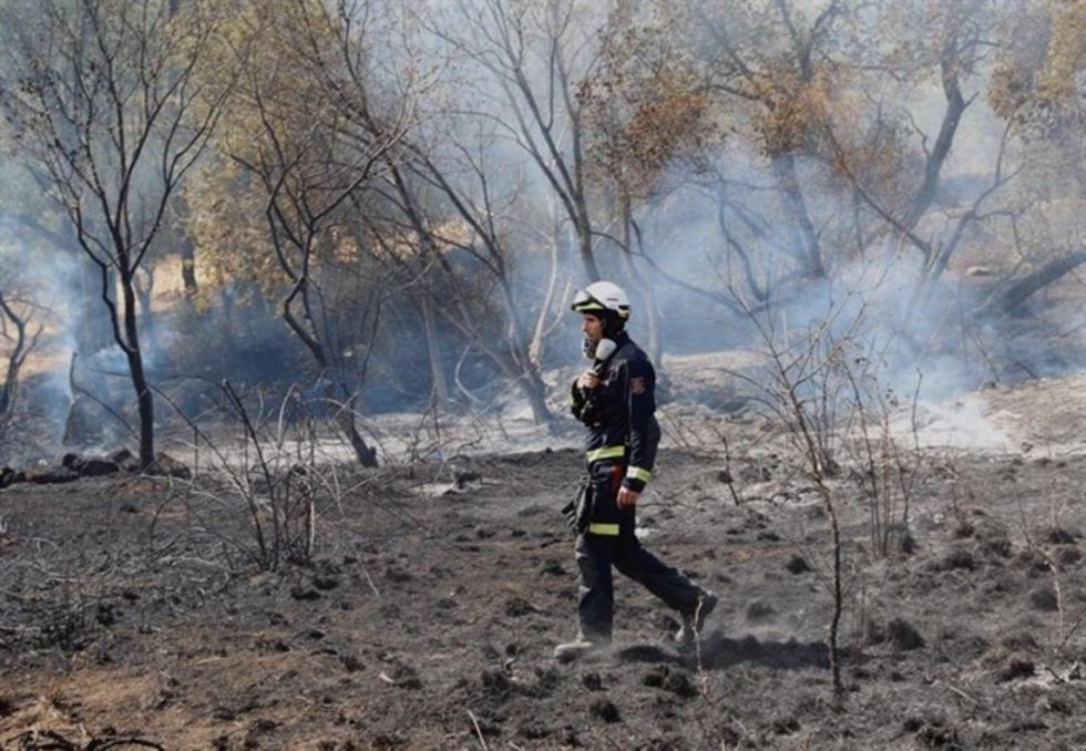 7 de julio. Los incendios de Cadalso y Cenicientos durante el verano de 2019 han sido los más devastadores del siglo XXI en la Comunidad de Madrid.