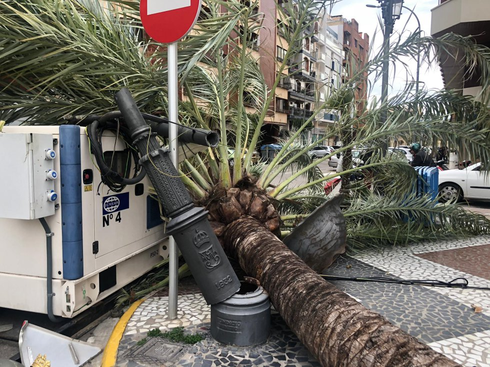 La palmera ha destrozado una farola y un gran macetero