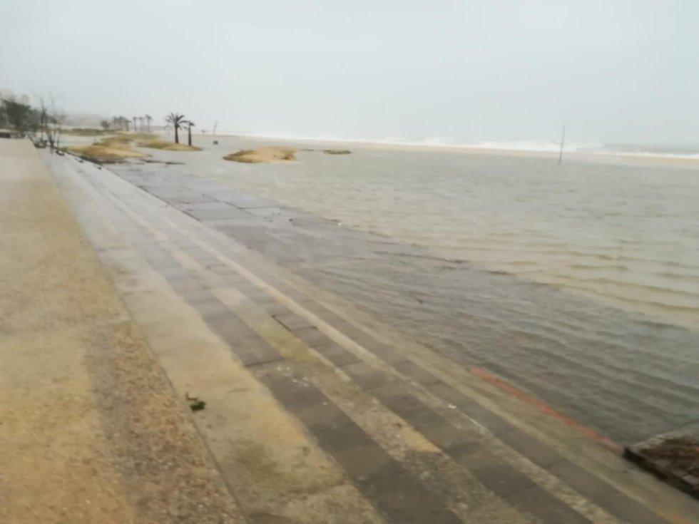 Efectes del temporal Glòria